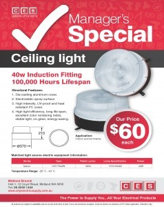 MID - Special Offer Ceiling Lightimage
